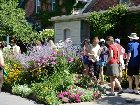 Promenade dans les jardins en juillet